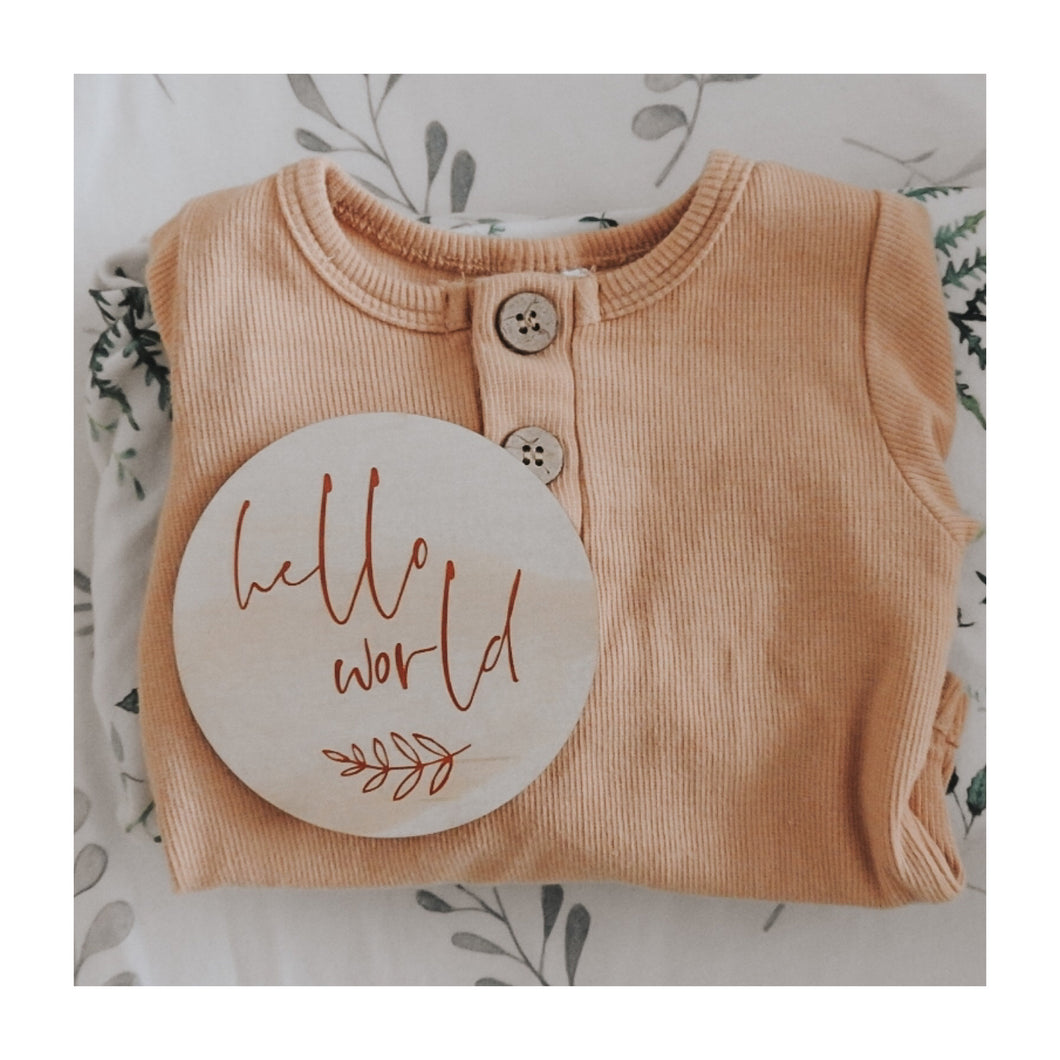 'Hello World' Birth Announcement Plaque