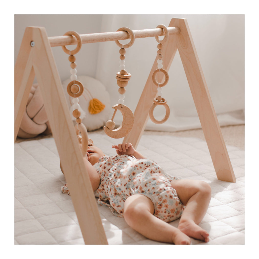 Play-gym/Pram Toys (Midnight Ed.)
