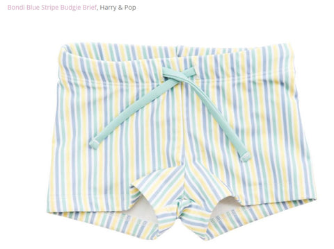 harry & pop budgie brief in bondi blue stripe