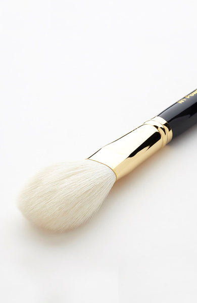 Powder Brush N1