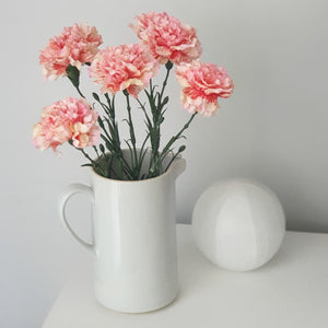 Striking Pink Carnations