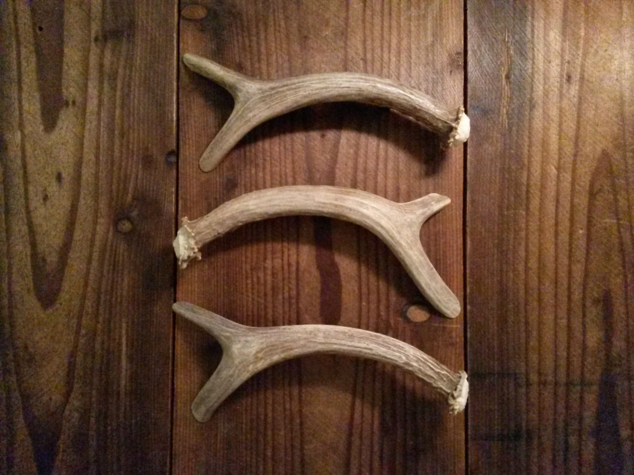 Forked Antler Handle variations staggered by Antler Artisans