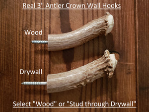 Antler Wall Hooks for Wood and Drywall
