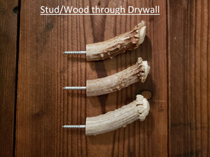 Antler Crown Wall Hooks for Drywall