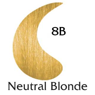 Neutral Blonde 8B ppd free hair color (2 oz color and 2 oz developer)