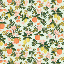 Rifle Paper Co - Citrus Floral Mint Cotton from Primavera