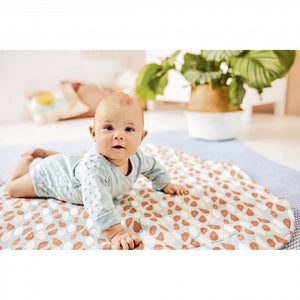 Dotty Jacquard Cotton Jersey Terrycloth