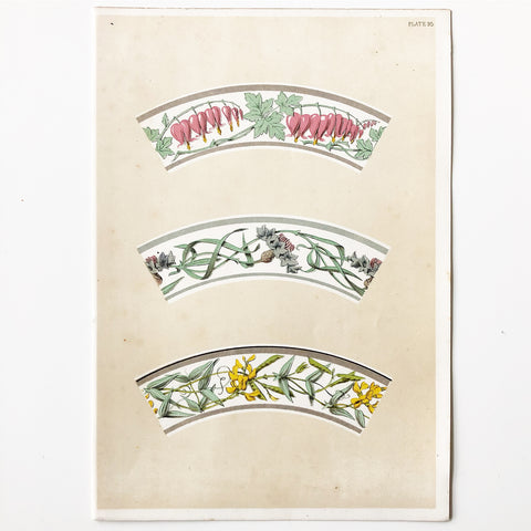 Antique Botanical Book Plate 95