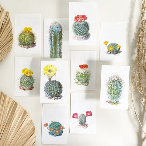Vintage Cactus Mini Bookplate Lot