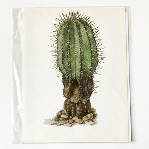 1970s Cactus and Succulent Book Plate 2