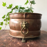 Antique Brass and Copper Lion's Head Planter
