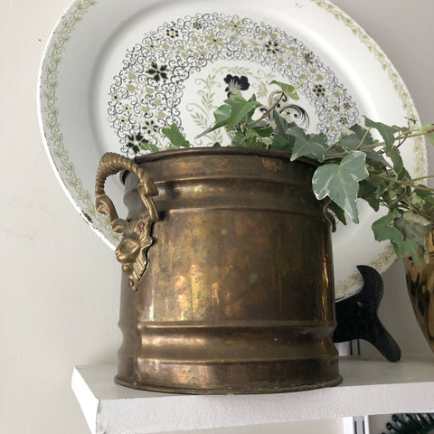 Vintage Brass Lion Head Planter Pot