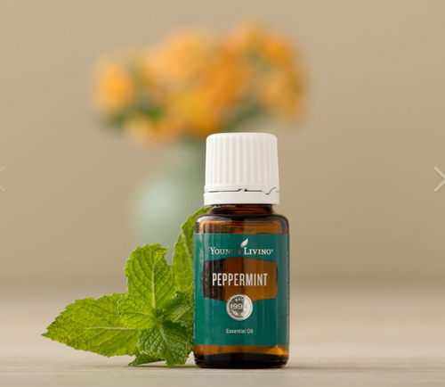 Peppermint Essential Oil / 15 ml