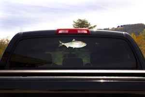 American Shad Truck Decal
