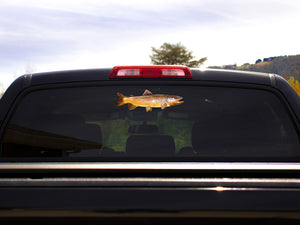 Brown Trout Truck Decal