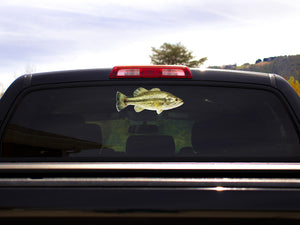Largemouth Bass Truck Decal