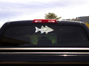 White Bass Truck Decal