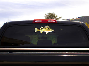 Yellow Perch Truck Decal