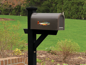 Brook Trout Mailbox Decal