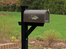 Smallmouth Bass Mailbox Decal