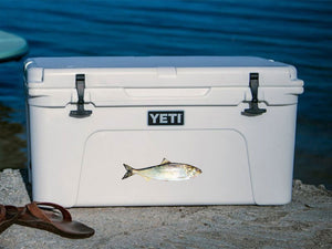American Shad cooler decal