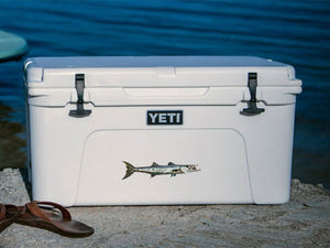 Barracuda cooler decal