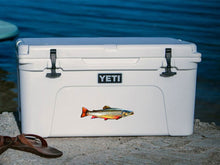 Brook Trout cooler decal