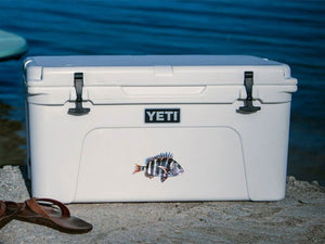 sheepshead cooler decal