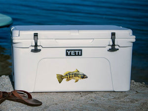 spotted bay bass cooler decal