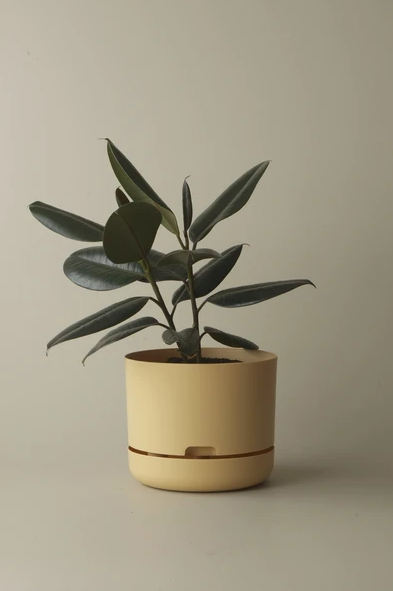 Mr Kitly - Self-Watering Plant Pots  - 250mm