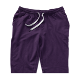 (Mis-sized- READ DESC)  plum  jogger shorts