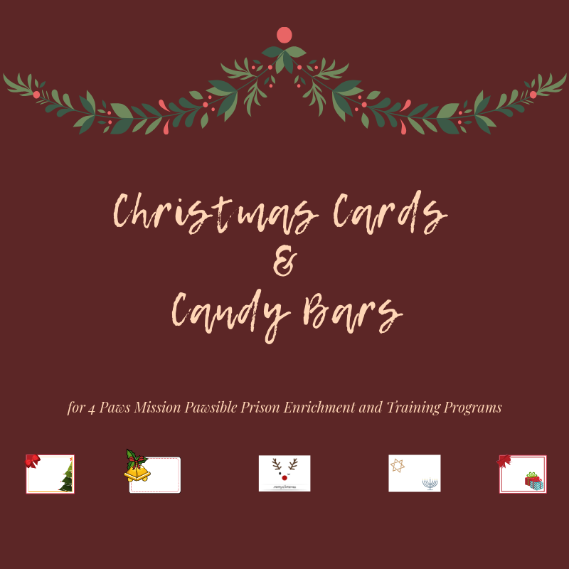 Donation - Christmas Cards and Candy Bars