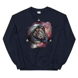 Space Zebra Sweatshirt - Tee Gurls