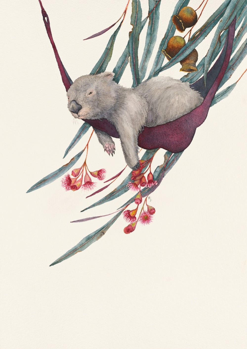 This is a watercolour painting of a thoroughly relaxed and mellow little wombat in its hammock enjoying the gentle breeze and shade of an Australian gum tree.