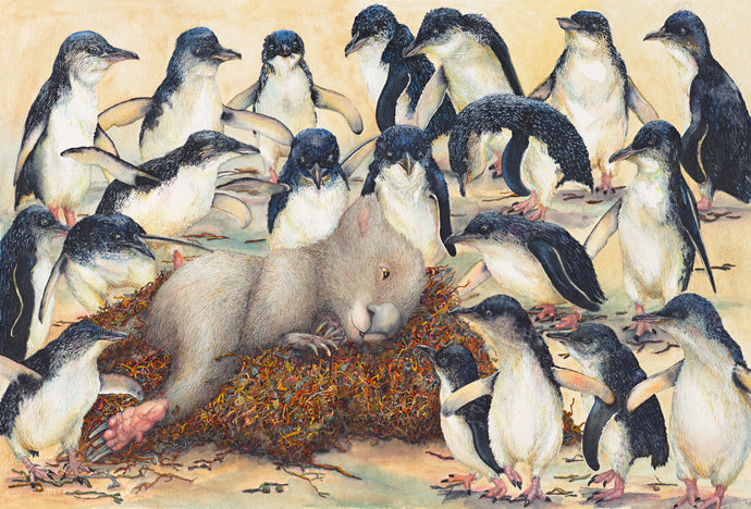 Goldilocks and the 20 Penguins-  penguins find a wombat sleeping in their nest