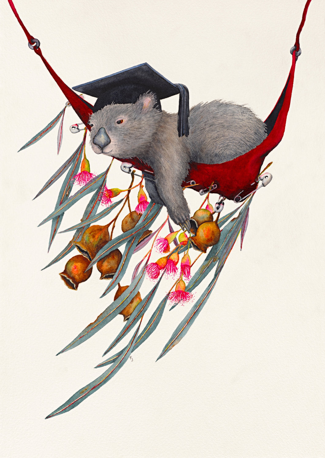 Graduation Siesta - a print of a Watercolour painting of a relaxing wombat