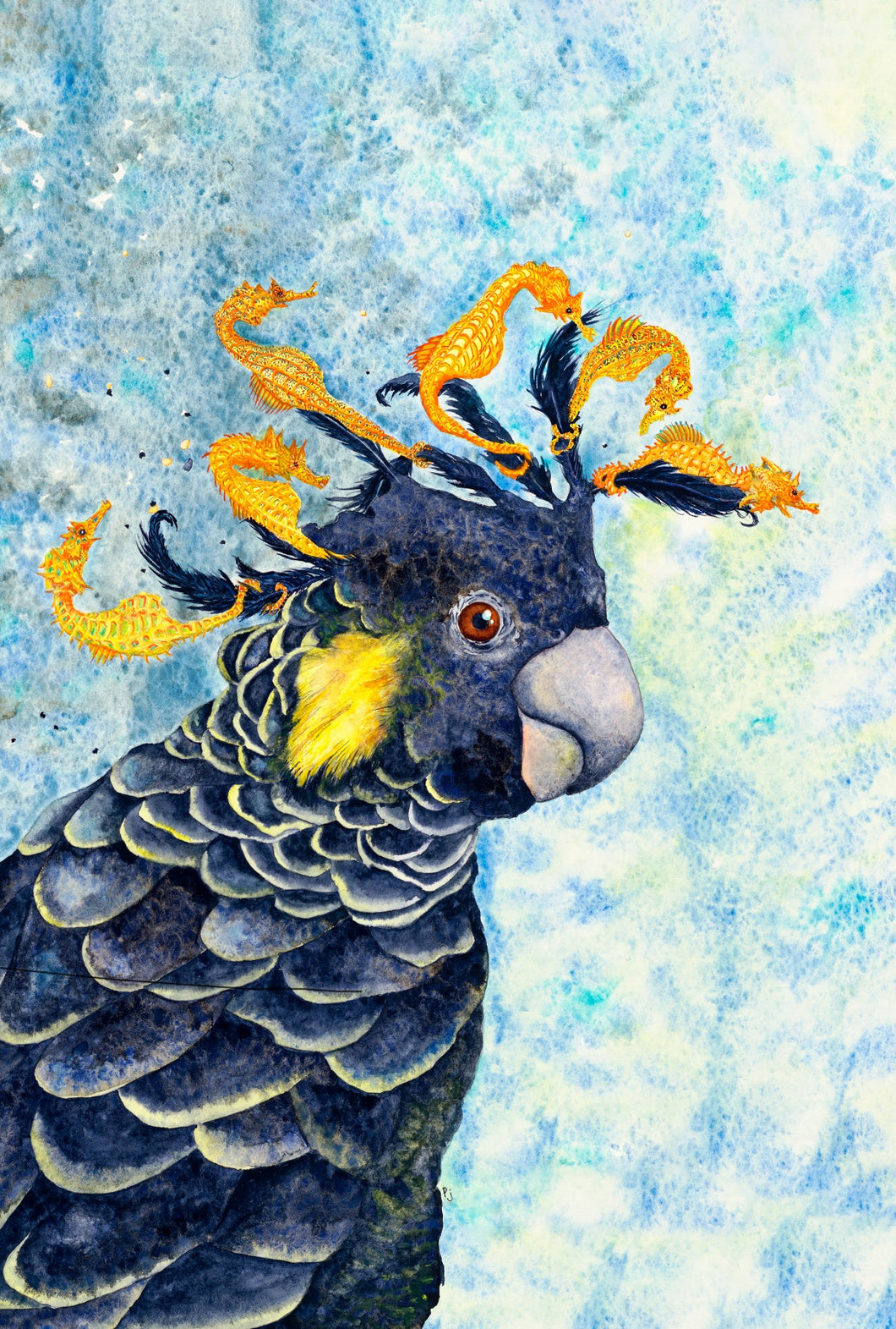 Yellow-tailed Black Cockatoo prints, titled: