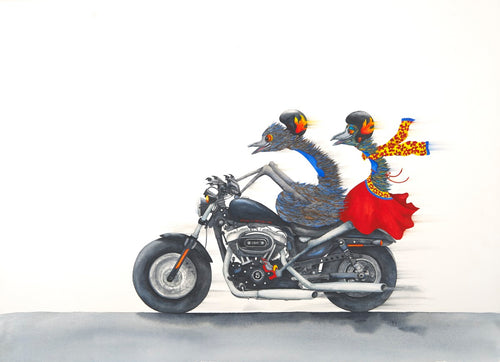 Motorcycle:  Who says emus can't fly!?
