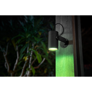 Philips Hue Lily Outdoor Spotlight