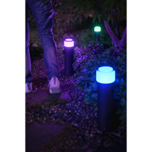 Load image into Gallery viewer, Philips Hue Pedestal Light Calla outdoor blue
