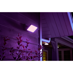 Philips hue discover floodlight purple