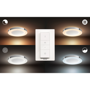 Philips Hue Adore Ceiling Light With Switch