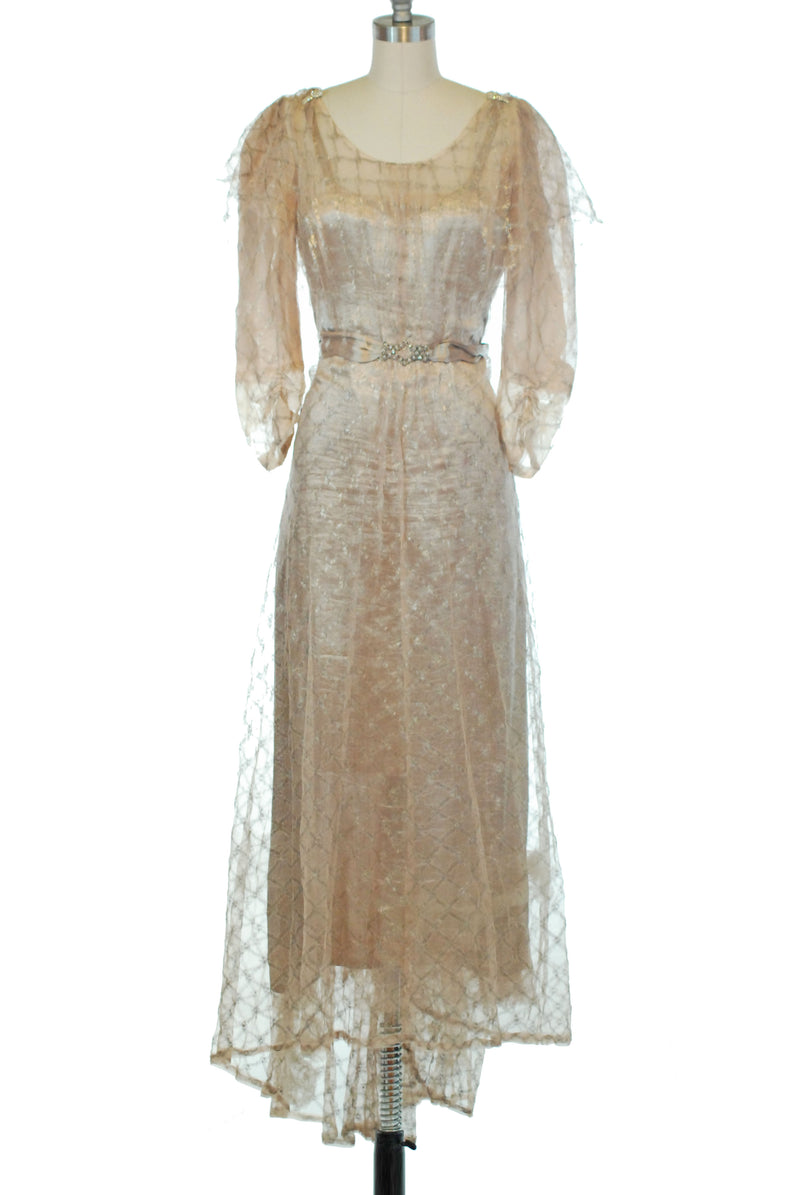 Fairytale 1930s Restyling of 1910s Pink Lamé Evening Gown with Netted Lamé Overlay