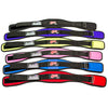 Schiek Training Belt - Full Colour Range