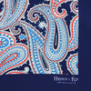 Navy Large Abstract Paisley Silk Handkerchief