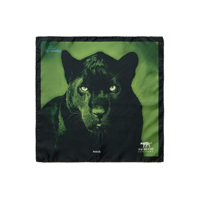Big Cat Sanctuary Maya Silk Pocket Square In Green
