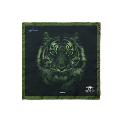 Big Cat Sanctuary Puna Silk Pocket Square In Green