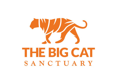 Big Cat Sanctuary Cashmere Scarf In Dark Natural