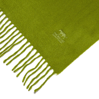 Big Cat Sanctuary Cashmere Scarf In Fern