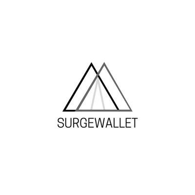 SurgeWallet.com - Brand name domain for sale on NameEstate.com